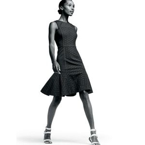 [J. Crew] Collection 16 Tall Paneled Eyelet Dress